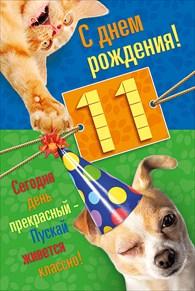 день рождения 11 лет
