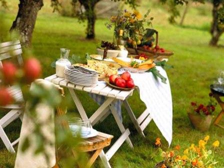 пикник на даче1